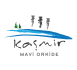 Kasmir Mavi